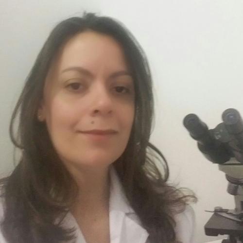 Luciana Guimarães